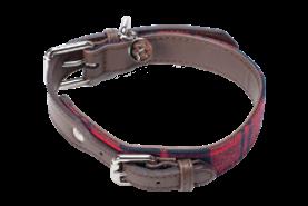 Dog Collar - Buffalo