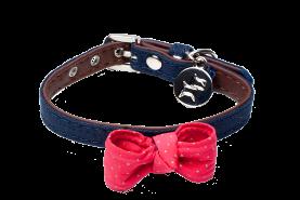 Puppy Collar - Rocko